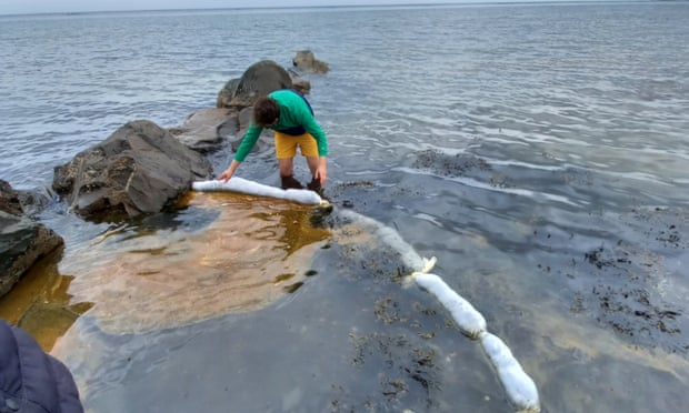 Hair waste from salons recycled to mop up oil spills on sea shores